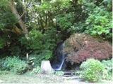 kugahara150813-4.jpg